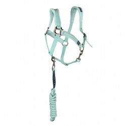 Harcour Napoli halter + leadrope