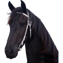 QHP Show Bridle Luxury
