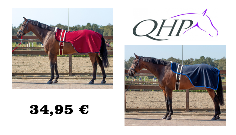 QHP Florence Lunging Rug